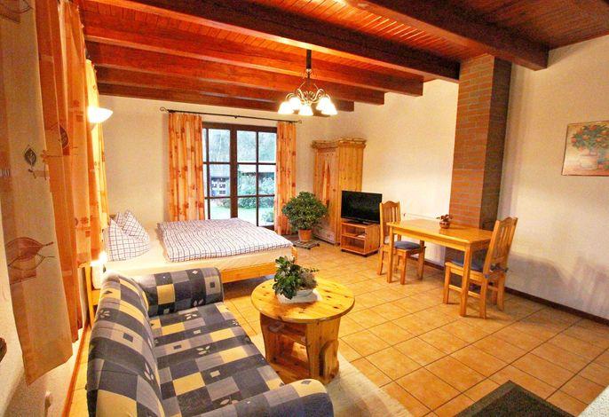 Ferienwohnung mit kombiniertem Wohn-und Schlafbereich