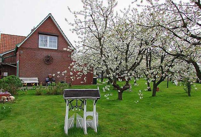 Knubberhaus - Das Ferienhaus im Kirschenhain