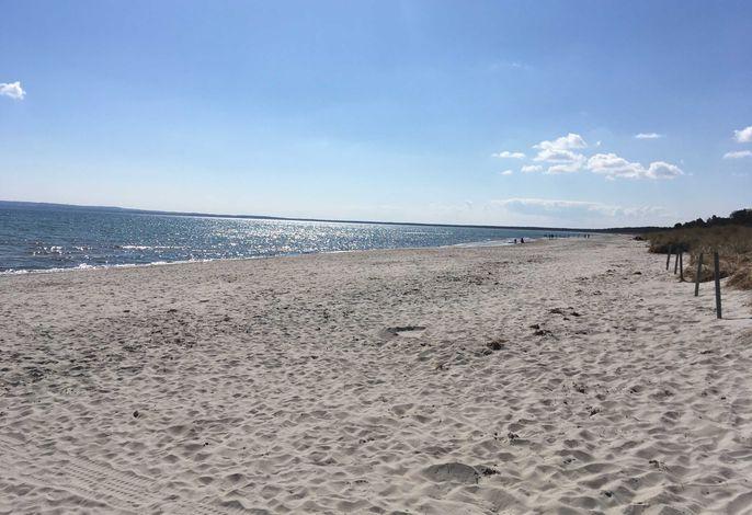 Strandwohnung Wassermusik