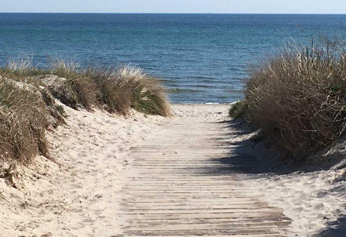 Strandkörbchen