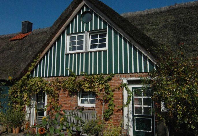 Ihre Süd - Terrasse , vom Wein umgeben! - Die rechte Tür ist ihr Hauseingang, im Obergeschoß Ihre Fenster mit weitem Blick über das ALTEN LAND