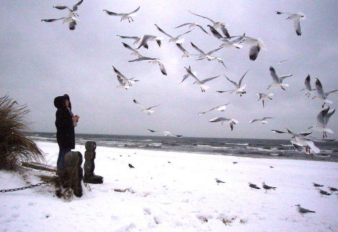 Ferienwohnung Strandhafer **300m bis zum Ostseestrand**