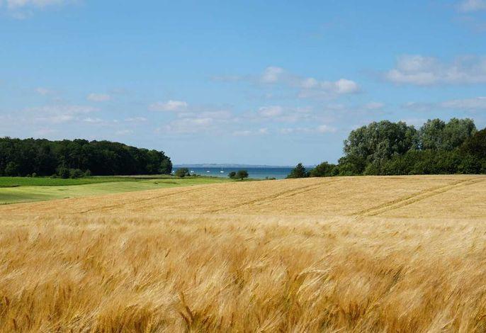 Kaiser, Landhaus Esgrus Ferienwohnung Ostseeblick