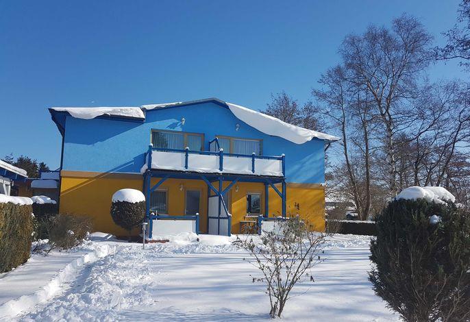 Ostsee-Muschel