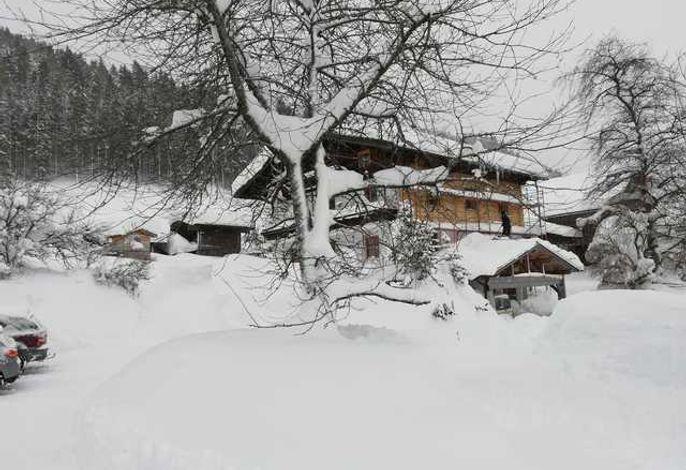 Payrhof - Familienurlaub am Bio-Bergbauernhof
