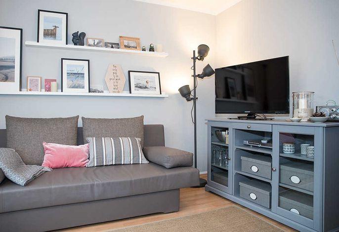 Wohnbreich mit Doppelschlafcouch und Flachbild-TV