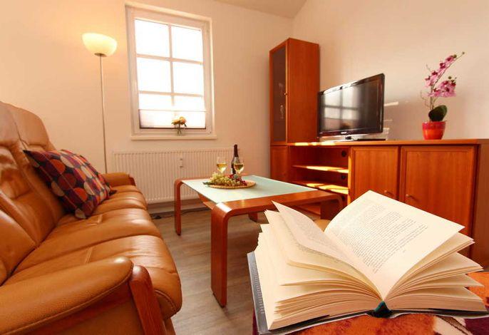 Wohnbereich mit Dachterrasse und Flatscreen-TV