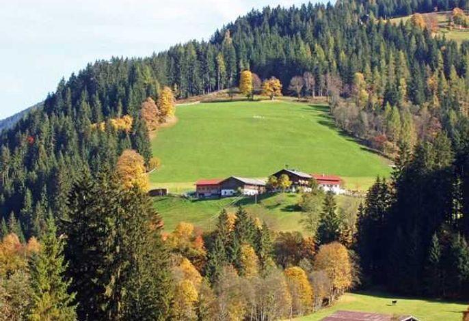 Kinderfreundlicher Erholungsbauernhof Windbachgut