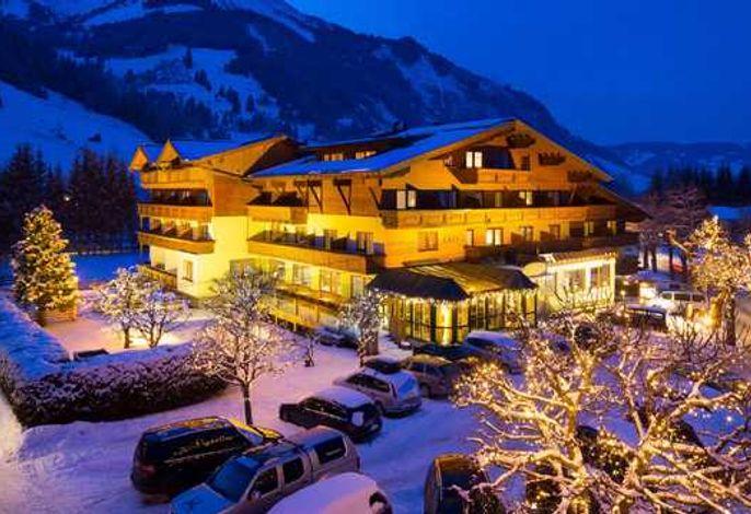 Hotel Alpina****