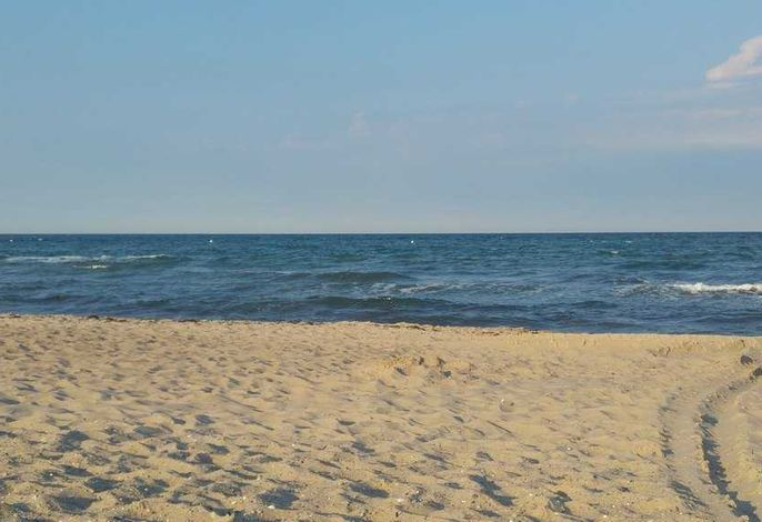 Ferienwohnung Austernperle - KGS1