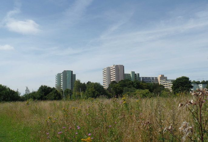 648 - 1-Raum-Fewo - Ferienpark
