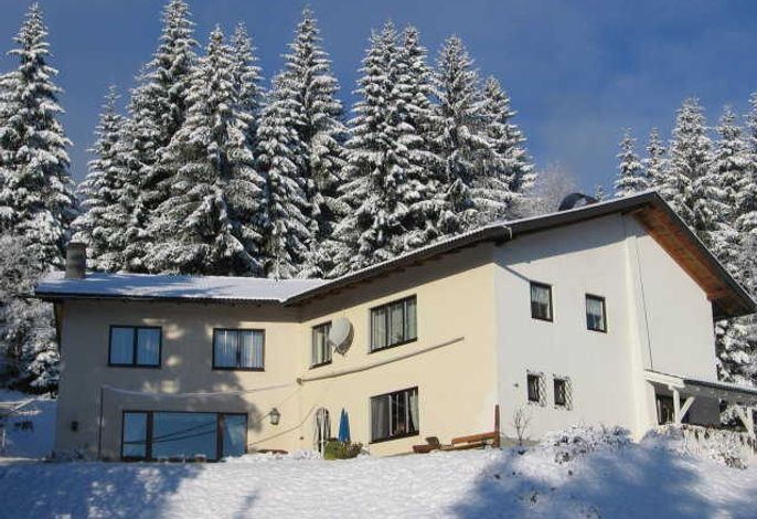 Ferienhaus Hollinger