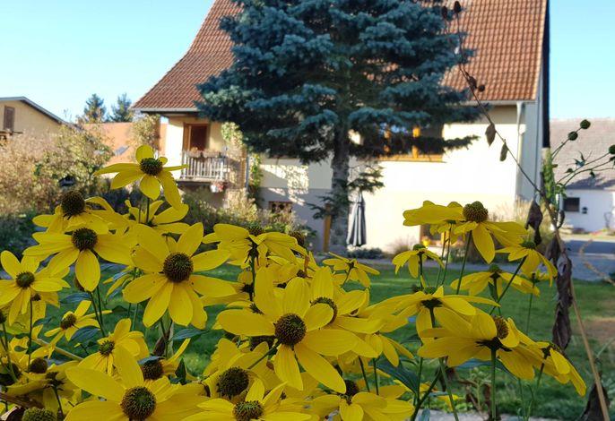 Großzügiges Ferienhaus an der Müritz mit Panoramablick