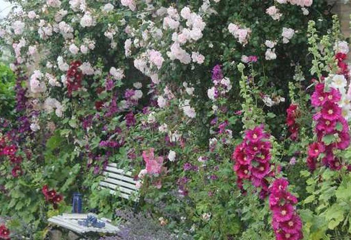 Ferienwohnung Gartenblick - Ferienhof Börsby