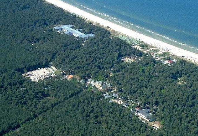 Strandidyll im Küstenwald
