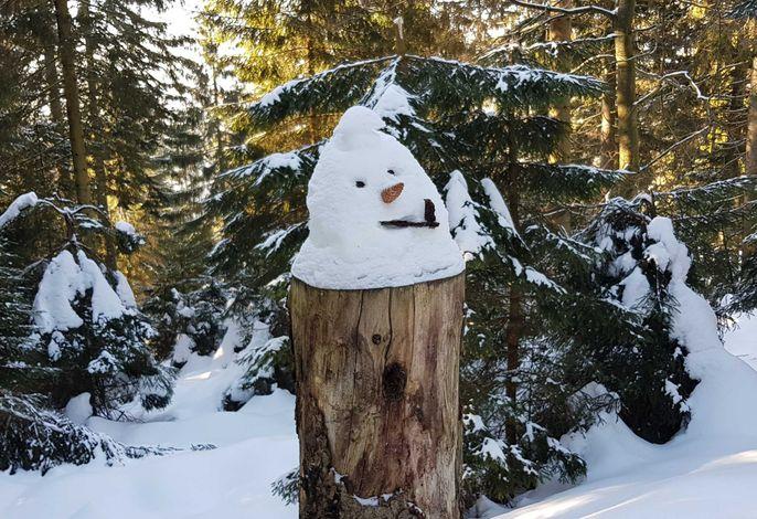Schneezweg, am Weg nahe der Schwarzwaldhochstrasse, die 700 Höhenmeter entfernt liegt.