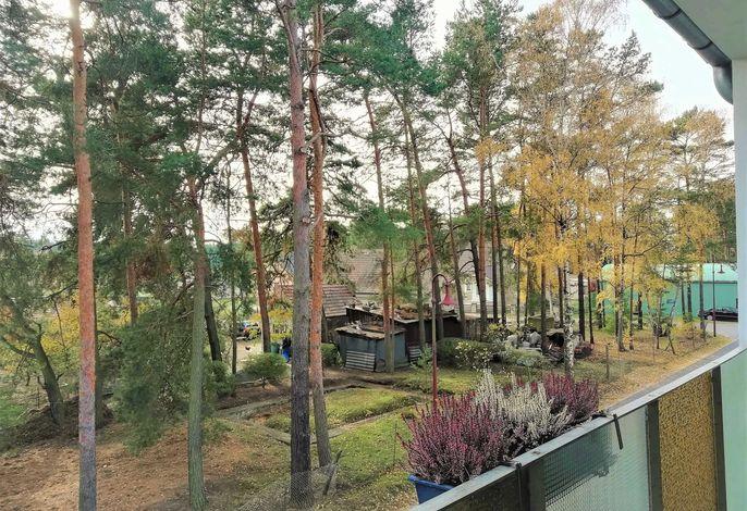 Ferienwohnung Bärwalder See