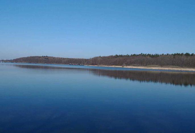 tierfreundliche Ferienwohnung am Petersdorfer See