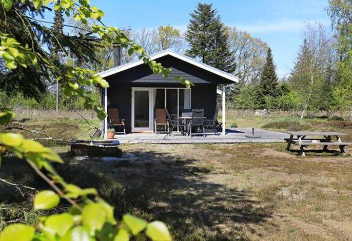 Ferienhaus: Lodskovvad, Skagen und Umgebung