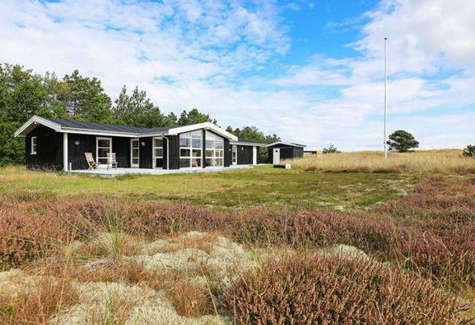 Ferienhaus: Ålbæk, Skagen und Umgebung