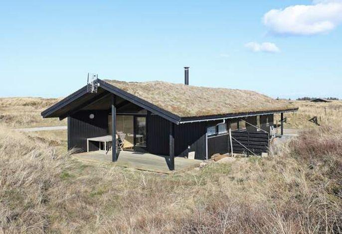 Ferienhaus: Kandestederne, Skagen und Umgebung