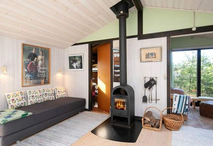 Ferienhaus: Skagen/Gl. Skagen, Skagen und Umgebung